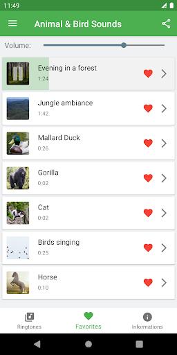 Bird and Animal soundboard screenshot 10