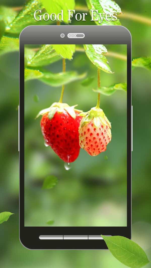 Red Strawberry Live Wallpaper screenshot 2