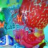 Flowerhorn Fish Special Live Wallpaper أيقونة