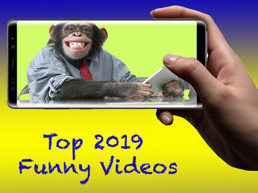 Funny Videos 2021 screenshot 2