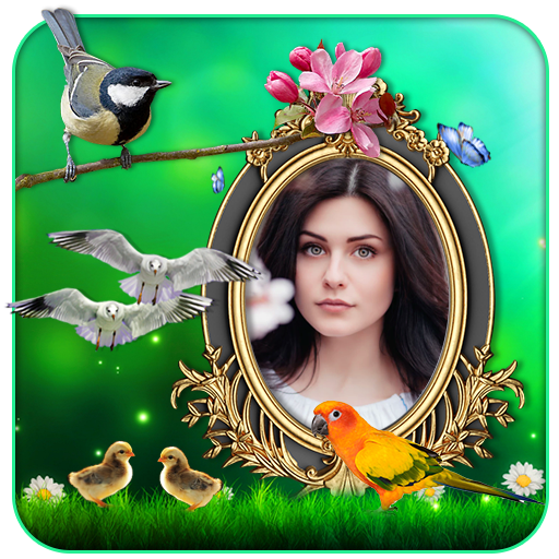 Birds 3D Live Wallpaper أيقونة