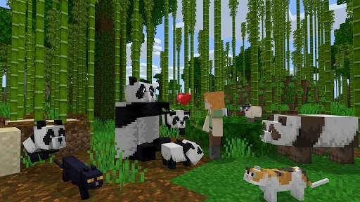 Minecraft screenshot 9