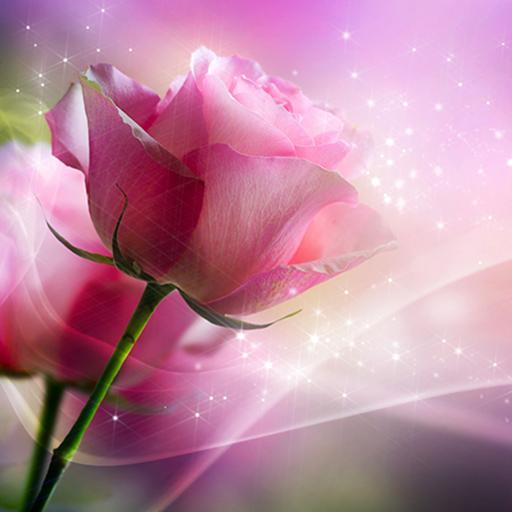 وردي  الوردة للجدران لايف أيقونة