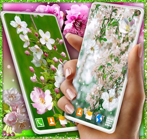 Cherry Blossom Live Wallpaper 🌸 Spring Wallpaper screenshot 4