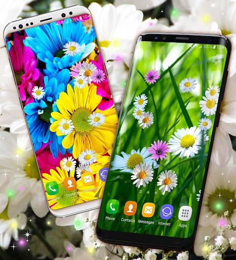 3D Daisy Live Wallpaper 🌼 Spring Field Themes screenshot 2