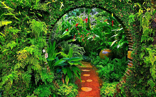 Garden Wallpaper screenshot 1