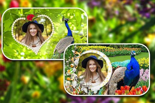 Peacock Photo Frames screenshot 4