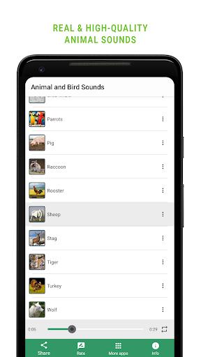 Animal and Bird Sounds screenshot 3