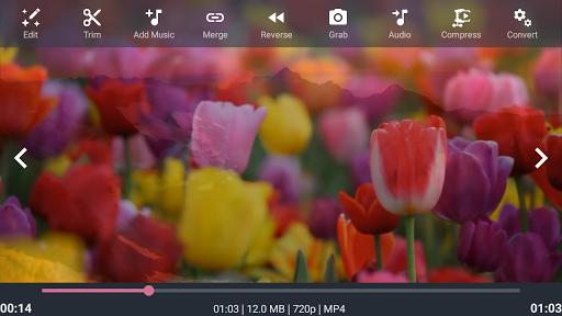 AndroVid - Video Editor, Video Maker, Photo Editor screenshot 8