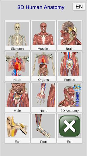 3D Bones and Organs (Anatomy) 1 تصوير الشاشة