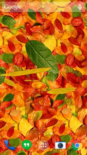Autumn leaves 3D LWP screenshot 1
