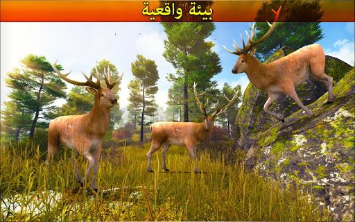 الغابة الغزال صياد 7 تصوير الشاشة