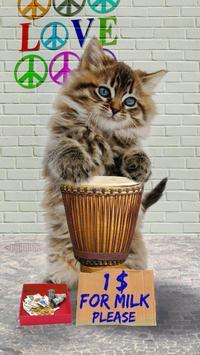 القطط مضحك. الرقص واللعب 9 تصوير الشاشة