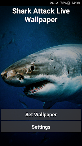 Shark Attack Live Wallpaper 1 تصوير الشاشة