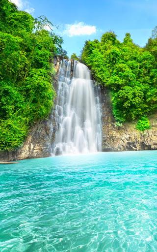 Wild Waterfalls Live Wallpaper screenshot 4