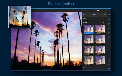 Adobe Lightroom - Editor Foto screenshot 12
