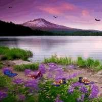Beautiful Lake Butterfly LWP on 9Apps
