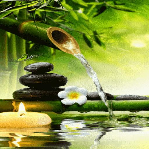 Bamboo Water Live Wallpaper أيقونة