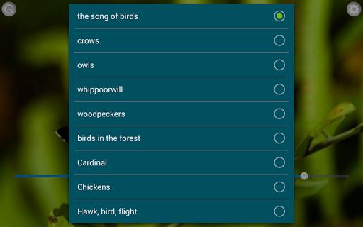 Birds Calls Sounds 8 تصوير الشاشة