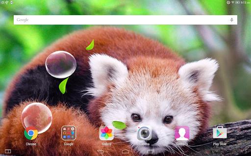 Cute Panda Live Wallpaper screenshot 10