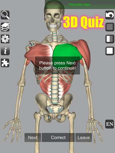 3D Bones and Organs (Anatomy) 14 تصوير الشاشة