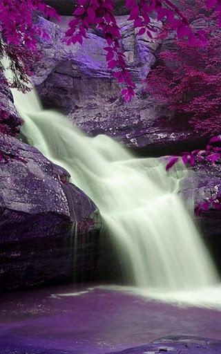Wild Waterfalls Live Wallpaper screenshot 3