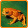 Animal Guessing Game أيقونة