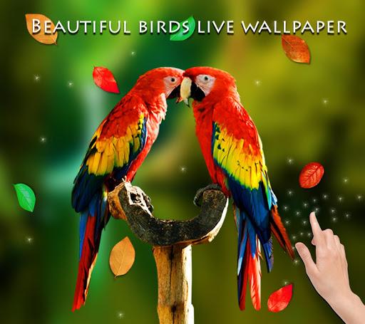 Birds 3D Live Wallpaper 9 تصوير الشاشة