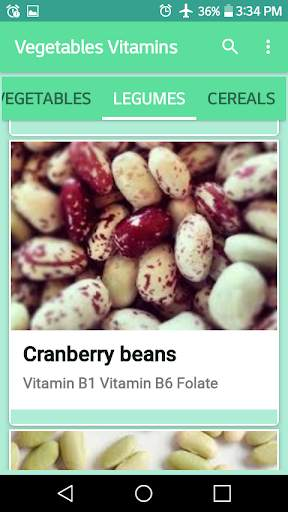 VEGETABLES VITAMINS screenshot 7