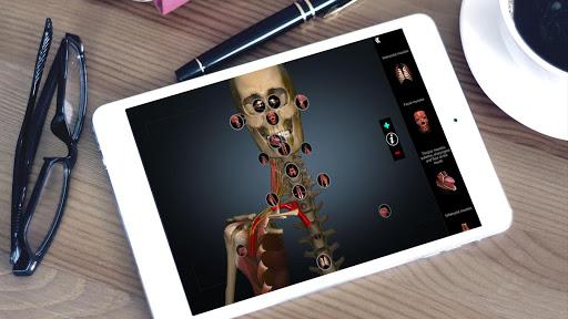 Anatomy Learning - 3D Anatomy Atlas screenshot 6