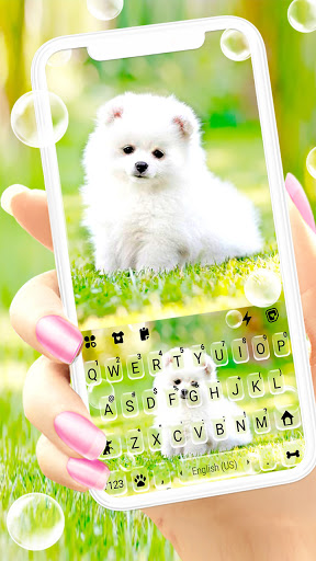Cute White Puppy Keyboard Background screenshot 1