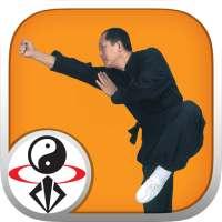 Shaolin Kung Fu on 9Apps