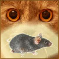 Mouse on the Screen for a Cat - Game for cats on 9Apps