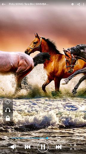 HD Video player - Video Downloader screenshot 12