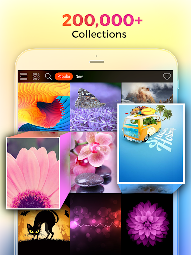 Kappboom - Cool Wallpapers & Background Wallpapers screenshot 6
