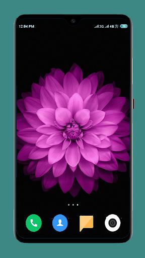 Flowers Wallpaper 4K screenshot 14