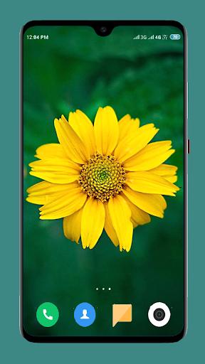 Flowers Wallpaper 4K screenshot 11