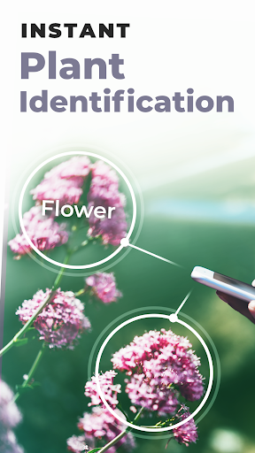 PlantSnap - FREE plant identifier app screenshot 7