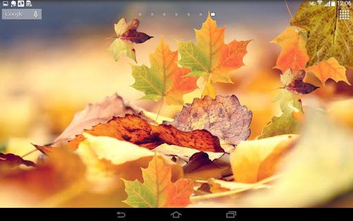 Spring Leaf wallpapers screenshot 7