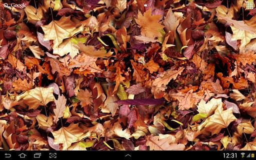 Autumn leaves 3D LWP screenshot 8
