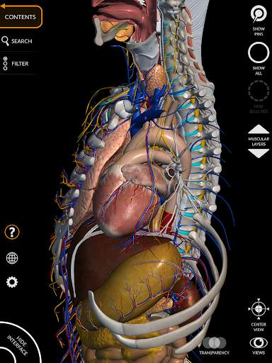 Anatomy 3D Atlas 13 تصوير الشاشة