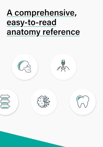Teach Me Anatomy: 3D Human Body & Clinical Quizzes screenshot 19