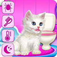 Kitty Care and Grooming on APKTom
