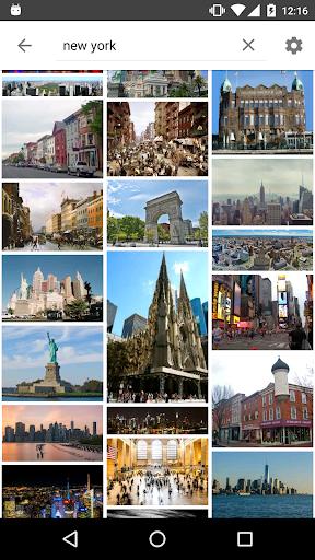 Image Search - ImageSearchMan screenshot 2