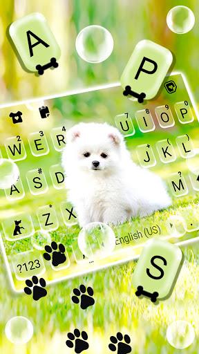 Cute White Puppy Keyboard Background screenshot 2