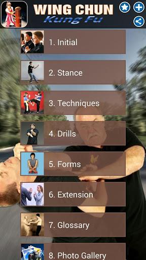 Wing Chun Kung Fu screenshot 1