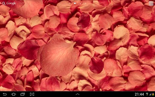 خلفيات بتلات حية ثلاثيةأبعاد 9 تصوير الشاشة