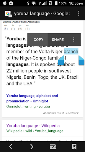 Yoruba Dictionary Multifunctional screenshot 12