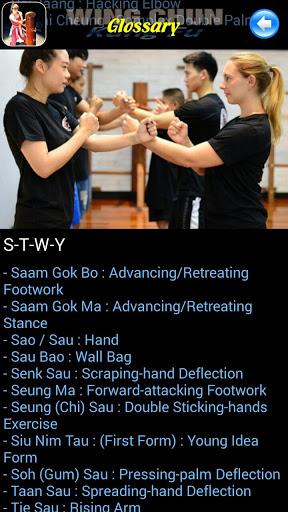 Wing Chun Kung Fu screenshot 3