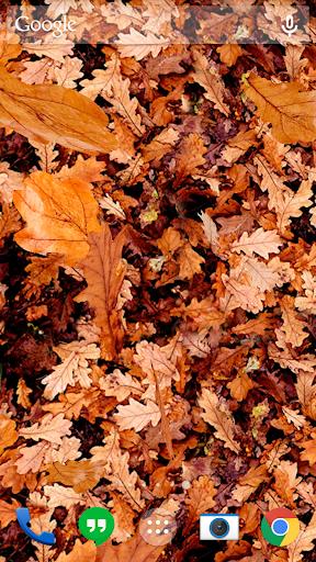 Autumn leaves 3D LWP screenshot 5